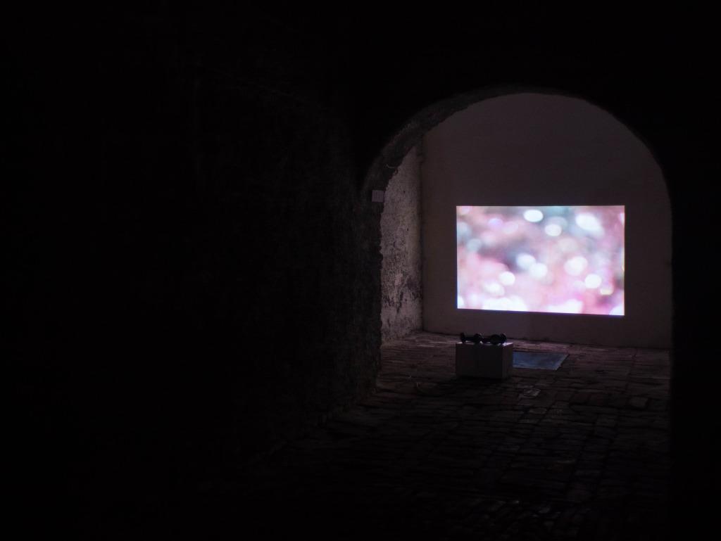 lux 01 – James Elaine & William Basinski | video exhibition _ The River