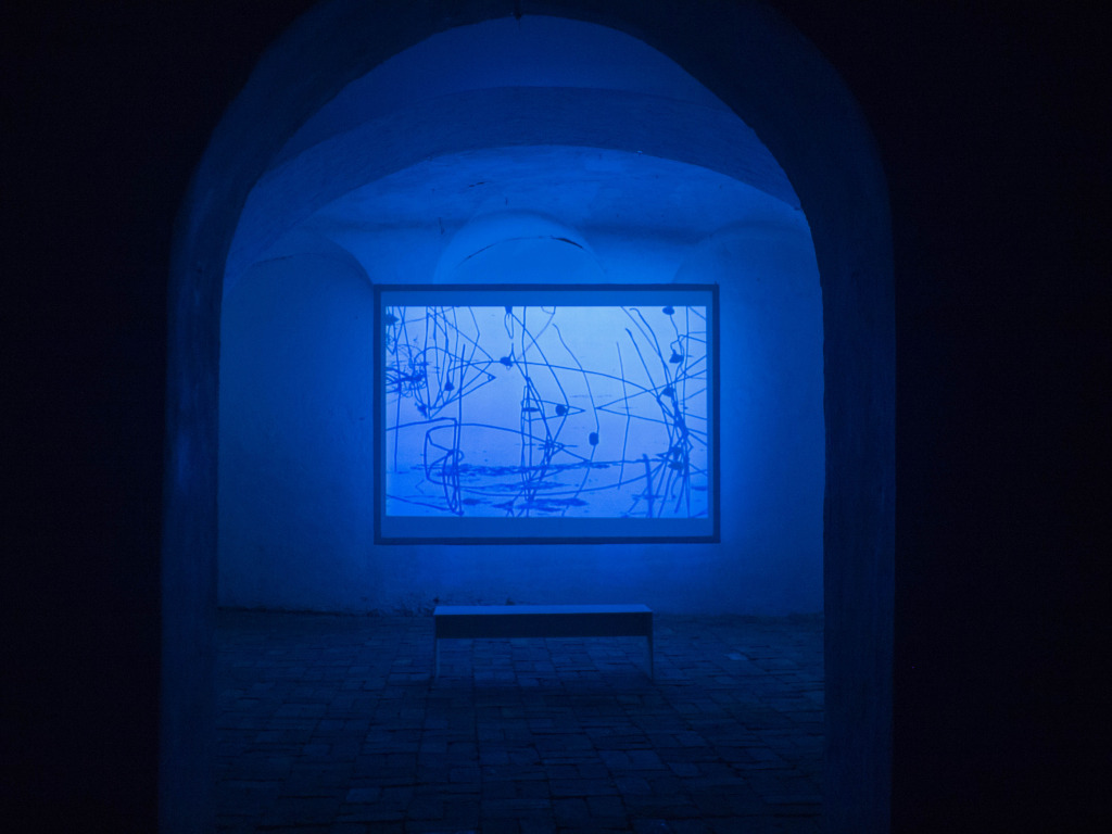 lux 01 – James Elaine & William Basinski | video exhibition _ Blueprints on a winter pond